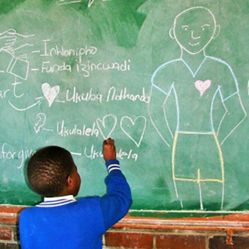 Eco-School Themes