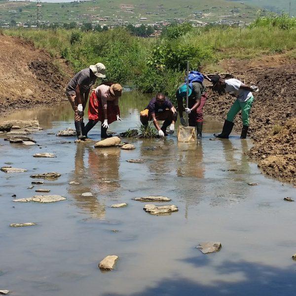 Environmental Science Technician qualification
